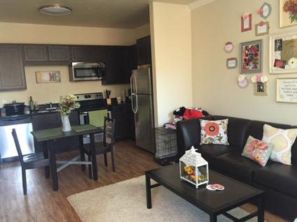 2b/2b Apartment Sublease Avail