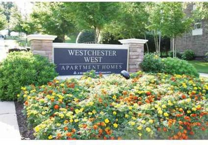3 Beds - Westchester West
