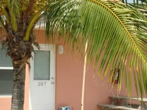 - $300 EFFICIENCY CONDO FOR RENT IN PARADISE