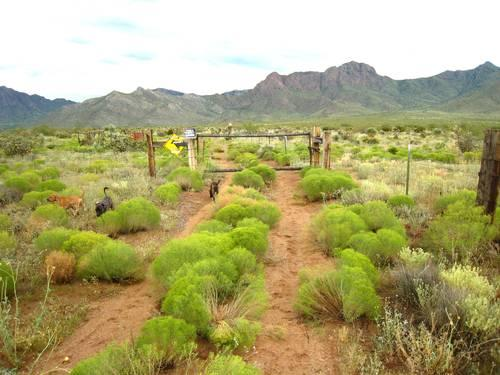 Commercial Property For Sale In Deming Nm