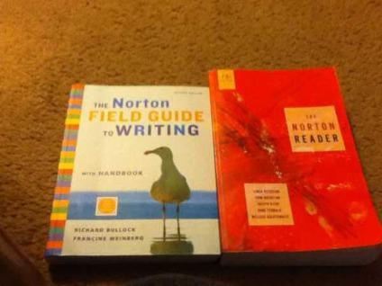 the norton field guide to writing 2nd edition
