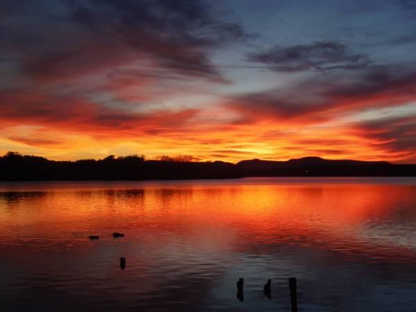3br - 1560ft² - Lake LBJ Open Water Vacation Rental