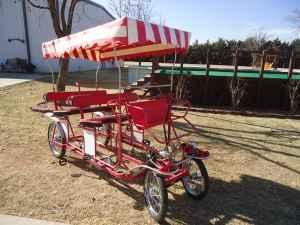 wheel person surrey bike lubbockshallowater  sale  lubbock texas classified