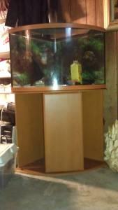 40 gallon corner fish tank topeka for sale in topeka for Corner fish tank for sale