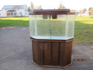Fish tank games 50 gallon 50 gallon fish tank w cast for 50 gallon fish tank dimensions
