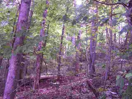 $47,500 Unicoi, Five acres atop a hill with a nice