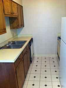 1br 675ft Take Off The First Month 39 S Rent Shangri La Apartments 1615 Wellerman Rd West