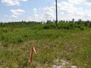 5 Acres (267'x677'x375'x954') (Folkston, Georgia)