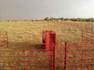 5 X 10 Corral Panels Rising Star For Sale In Lubbock