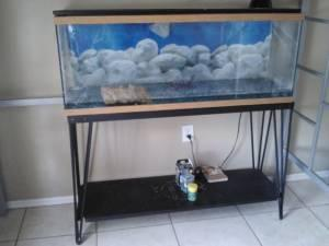 50 gallon fish tank w cast iron blk stand meadow
