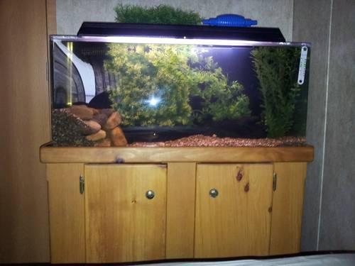 50 gallon seaclear system 2 acrylic aquarium  stand