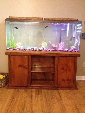 55 Gal Fish Tank W Stand Chandler For Sale In