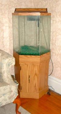 55-Gallon Fish Tank WStand  Fish