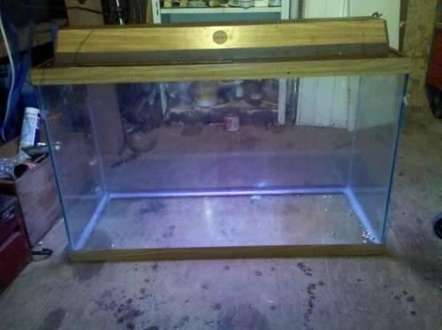 55 gallon fish tank with canopy and stand. ALL supplies included