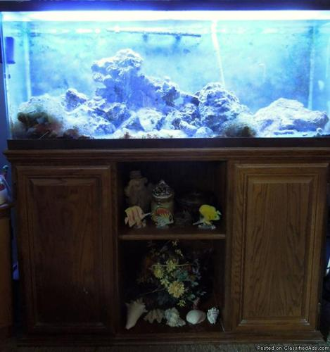 Saltwater aquarium 55 gallon setup 55 gallon reef for 55 gallon fish tank for sale
