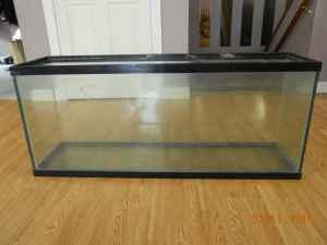 Gallon Fish Tank on 55 Gallon Aquarium Fish Tank 75 For Sale In Madison Wisconsin