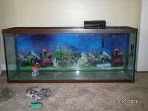 55 gallon fish aquarium cottage hill for sale in for 100 gallon fish tank for sale