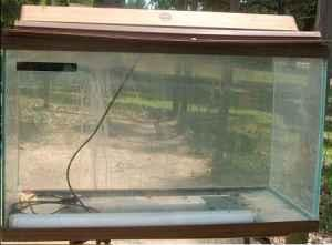 Gallon Fish Tank on 55 Gallon Fish Tank    70  Evadale   For Sale In Beaumont  Texas