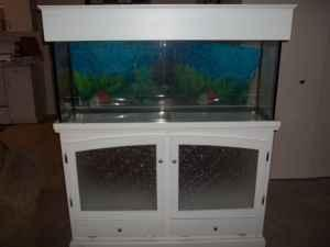 Gallon Fish Tank on 55 Gallon Fish Tank Set Up    250  Lakeland  For Sale In Lakeland
