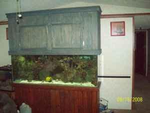 6 Foot Aquarium W Lights Ellabell Ga For Sale In