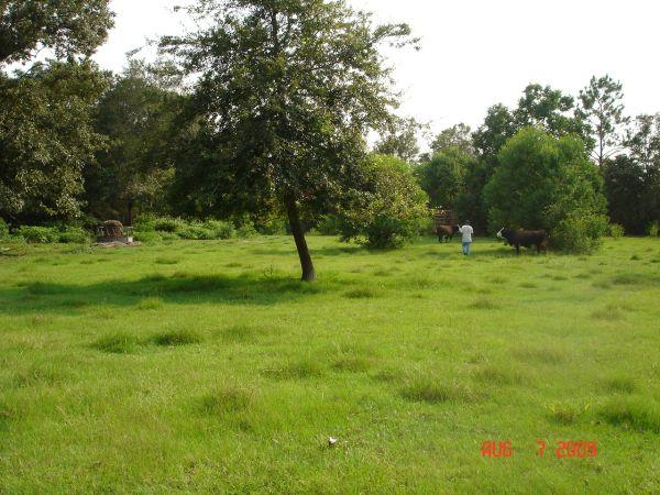 - $65500 / 3br - 1200ft² - 5 ACRES~GREAT PASTURE FOR
