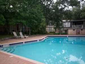 2br chateau deville condos 2020 continental ave for Tallahassee pool builders