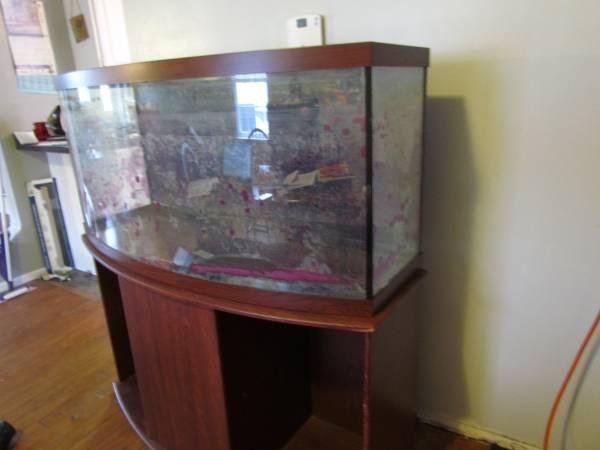 Fish tanks for sale york fish tank aquarium w stand for Bow front fish tank