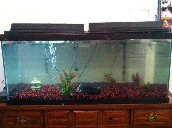 75 gallon aquarium for sale uniquarium 75 gallon tube for Tube fish tank