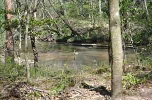 bogue chitto mature dating site Experience these top 5 things to do in washington parish like tubing, bogue chitto state park,  dating back to 1911,.