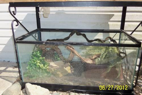 8 Red Belly Piranha w/215 gallon tank stand and canopy black