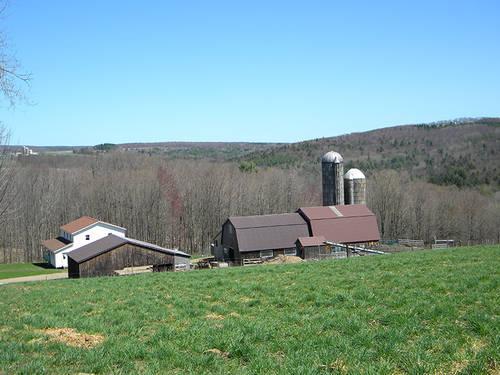 88 Acres Organic Farmland Organic Amish Dairy Farm