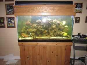 90 gallon salt water saltwater fish tank aquarium for 90 gallon fish tank for sale