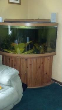 Fish Tank Sold Separately This Is Shipped Via Freight Truck No Ups Or Fedex Select Free Shipping