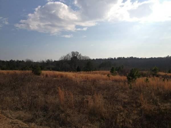 - $96000 Over 14 Acres!