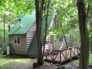 a frame cabin north of williamsport for sale in trout