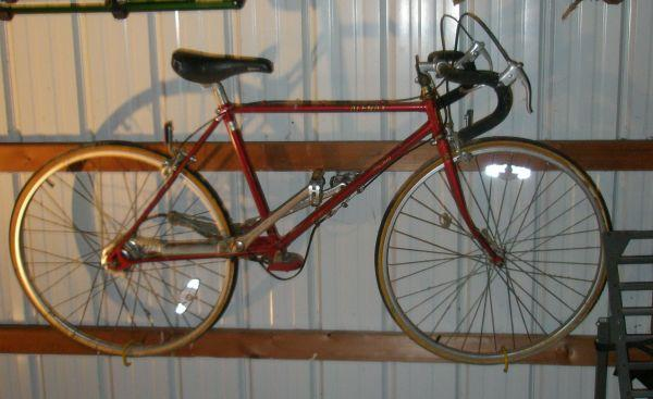 ALENAX BICYCLE - (Walworth, NY) for Sale in Rochester, New ...