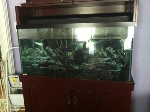 All-Glass AGA 90 gallon aquarium fish tank with AquaClear 110 filter