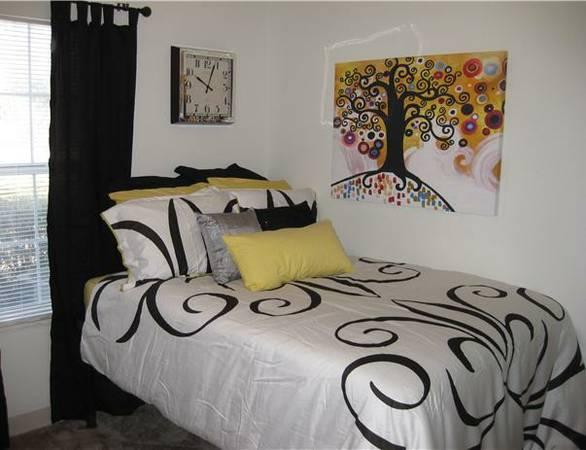 All Inclusive Student Housing For Rent In Gainesville Florida Classified