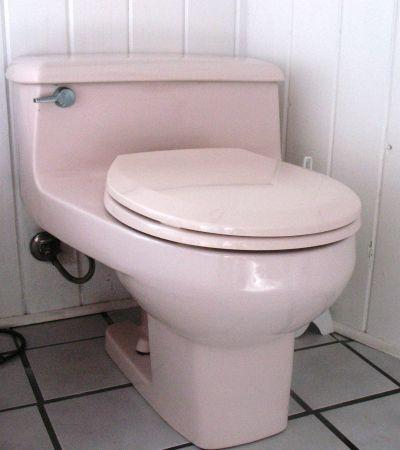 American Standard Sink Toilet And Jet Tub North