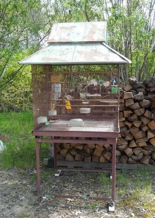 Antique Bird Cage For Sale In Nevada City California