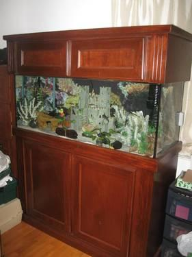 Aquarium 75 Gallon Complete Fish Tank Set Up For Sale In