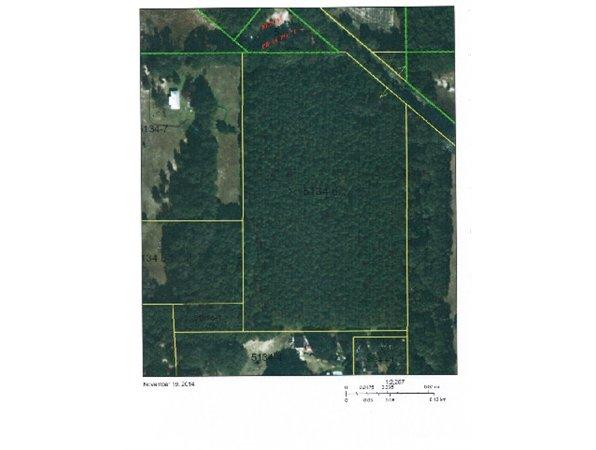 Archer, FL Alachua Country Land 15.500000 acre