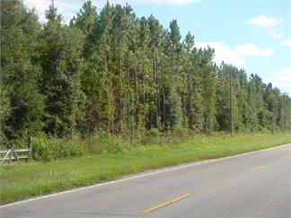 Archer, FL Alachua Country Land 318.000000 acre