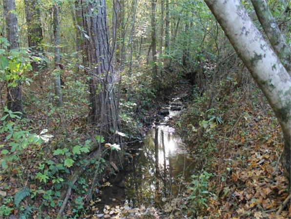 Ashland Al Clay Country Land 75 000000 Acre For Sale In