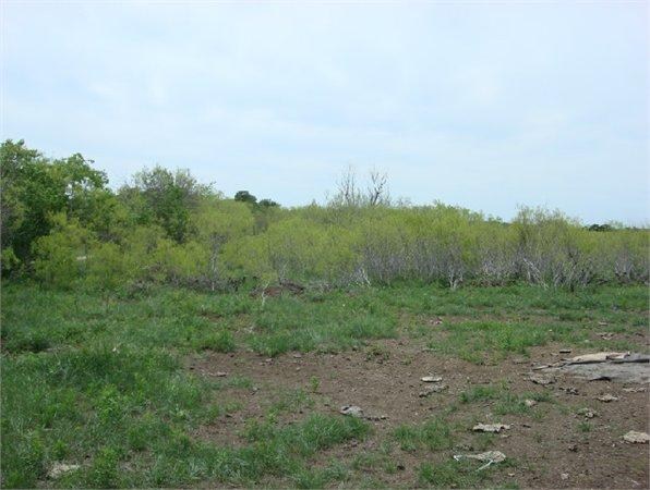austin tx caldwell country land acre for sale