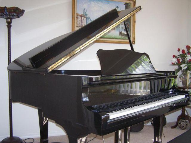 Baby Grand Piano For Sale In Clermont Florida Classified