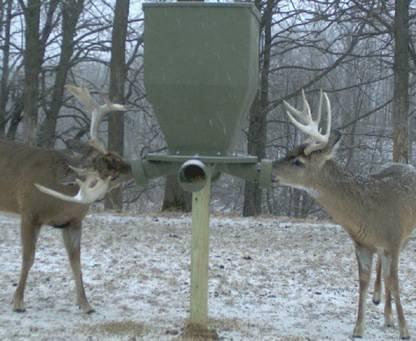 Banks Feedbank Deer Feeder Enclosed Deer Stand - $229