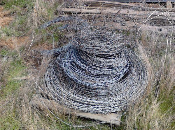 Barbed Wire (Yakima)