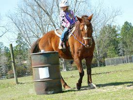 Barrel Race and Pole Bending