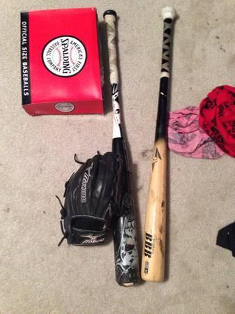 Baseball equipment - $100